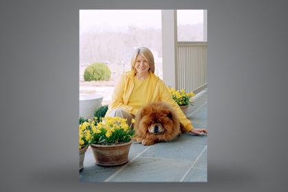 BELLE and Martha Stewart